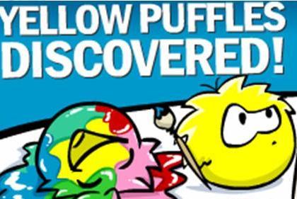 yellow-puffles
